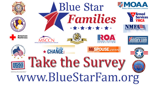 Military Family Lifestyle Survey